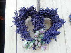 Lavender Gift for any season